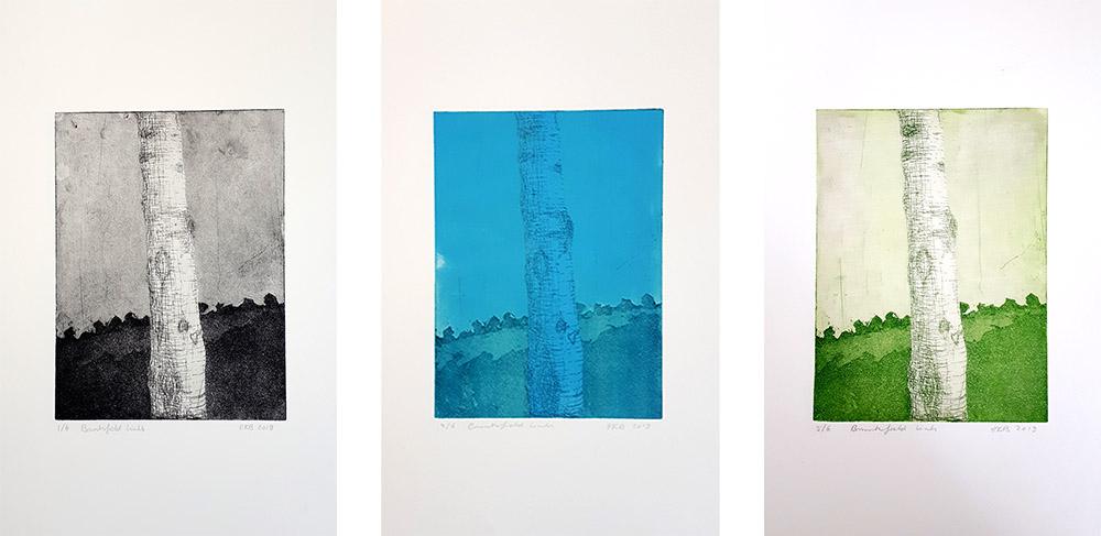 Three tree trunk etchings printed by Elisabeth Boerwinkel during her course at Edinburgh Printmakers